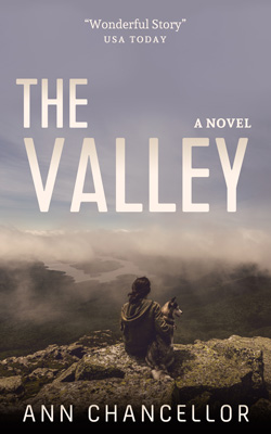 Nº 0131 - The Valley