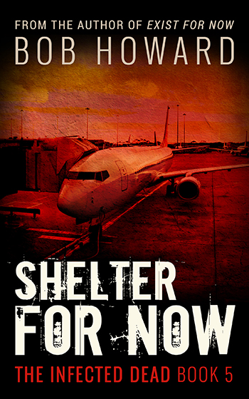Shelter For Now - Portada para ebook